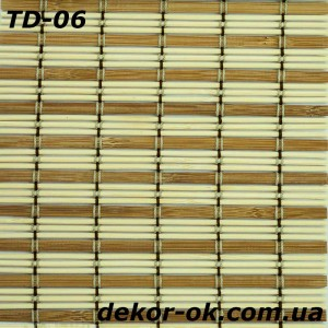 TD-06